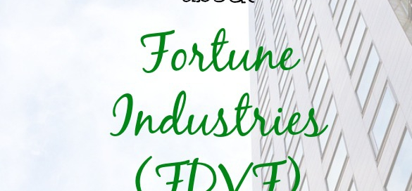 Fortune industries, fdvf