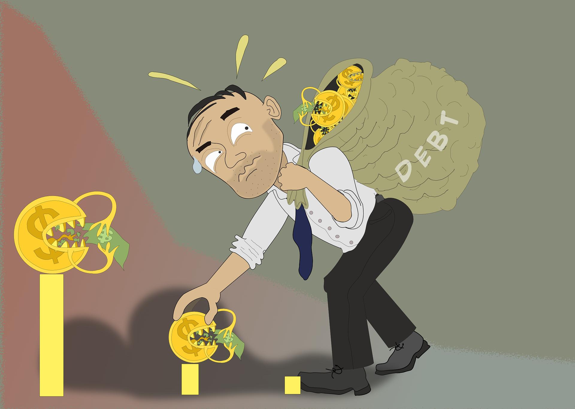 debt management skills